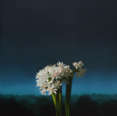 Bruce Cohen, 'Narcissus Against Evening Sky', 2013