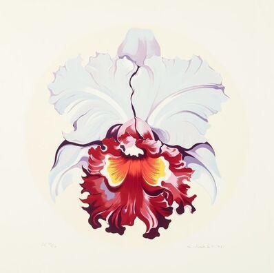 Lowell Nesbitt, 'Yellow and Blue Iris', 1981