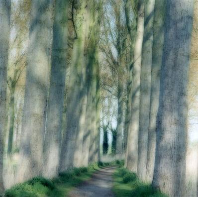 Lynn Geesaman, 'Damme, Belgium (4-04-61c-10)', 2004