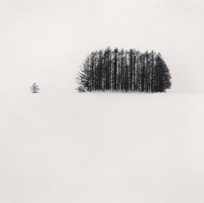 Michael Kenna, 'Copse and Tree, Mita, Hokkaido, Japan', 2007
