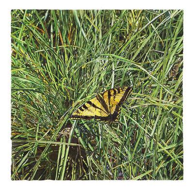 Joseph Raffael, 'Butterfly in Grasses', 2020