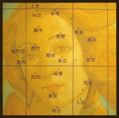 Nie Jian Bing, 'Venus - classical baroque portrait, chinese characters, oil on canvas', 2008
