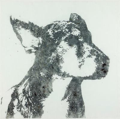 Pedro Gomes, 'Cão #12'
