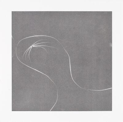 Nina Katchadourian, 'Whisker Print (1B)', 2013