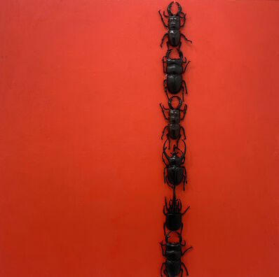 Charles P. Reay, 'Amazing Beetle Circus: Newman', 2019