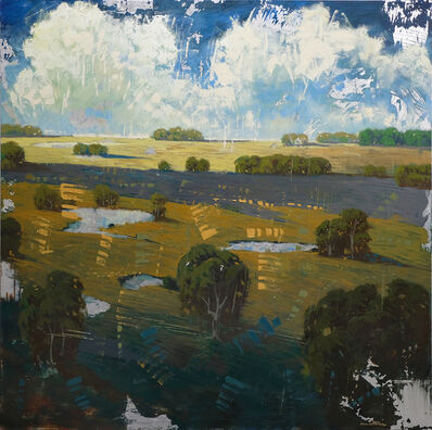 James Armstrong, 'Distant Field Ponds'