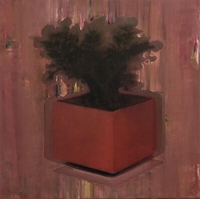 Attila Szűcs, 'House Plant', 2017