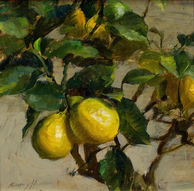 Quang Ho, 'Meier Lemons', 2016