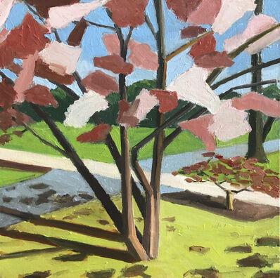 Michele BonDurant, 'Magnolia, late afternoon', 2020