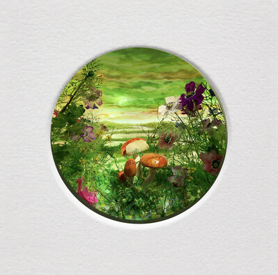Patrick Jacobs, 'Moonlit Bog with Mushroom Cluster (Diorama viewed through 2.75 inch window)', 2020