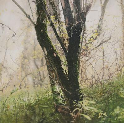 Stephan Kaluza, 'Transit (II) - 55', 2019