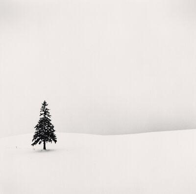 Michael Kenna, 'Lone Tree, Bibaushi, Hokkaido, Japan', 2004