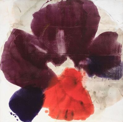 Dirk de Bruycker, 'Seaflower III', 2014