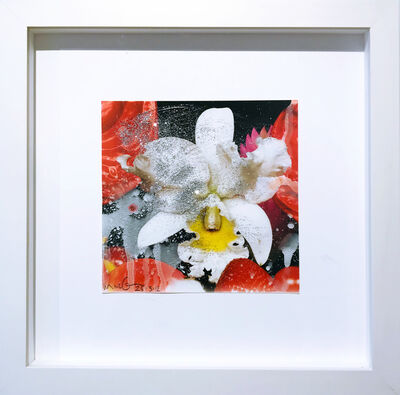 Marc Quinn, 'Untitled (Print with Paint 193)', 2012
