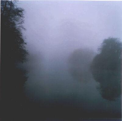 Robert Davies, 'Landscape/River Series: February 1', 2009