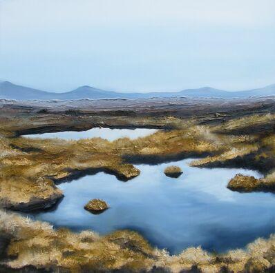 Miriam Dowling, 'Bog Land', 2018