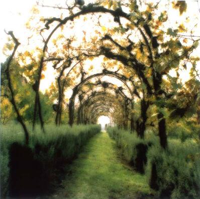 Lynn Geesaman, 'Certosa di Pontgnano, Italy (10-00-17c-2)', 2000