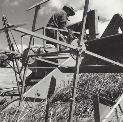 Gordon Parks, 'Harvesting Grain, Augusta, Maine', 1944
