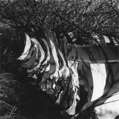 Issei Suda, '10 Annaka Gunma', 1976