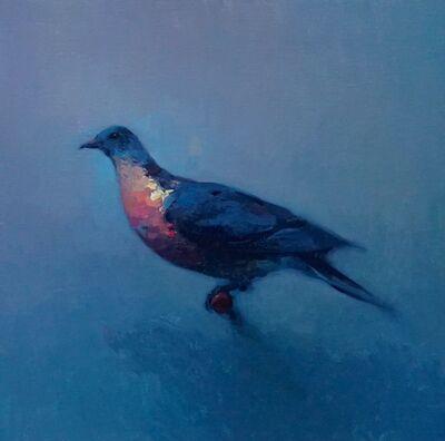 Stephen Bauman, 'Passenger Pigeon', 2017