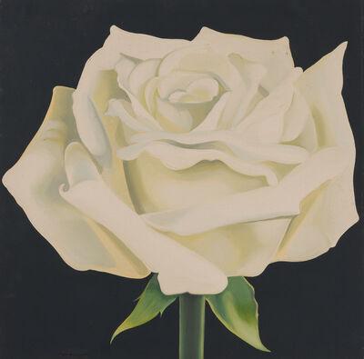 Lowell Nesbitt, 'Ivory Rose', 1965