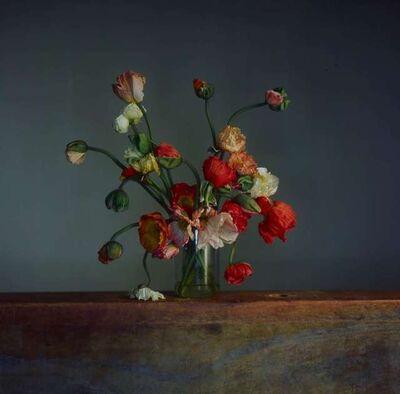 Richard Learoyd, 'Flowers, Day 1', 2019
