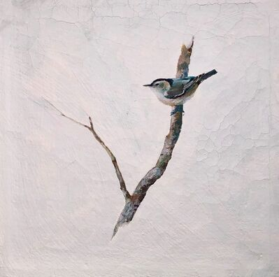 Peter Hoffer, 'Nuthatch 2'
