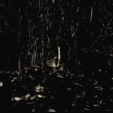 Ignacio Iasparra, 'Untitled', 2006
