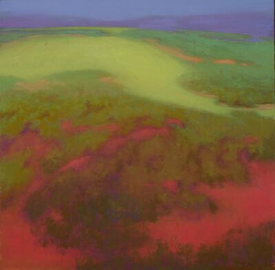 Richard Mayhew, 'Lumbee', 2009
