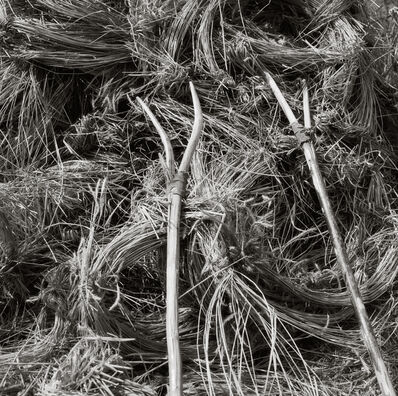Neil Folberg, 'Two-tined pitchforks', 1971