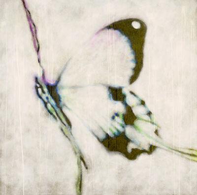 Massimo Barlettani, 'Butterfly effect', 2020