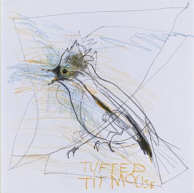 Sanda Iliescu, 'Tufted Titmouse, Baelophus Bicolor', 2013