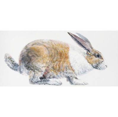 Don Nice, 'Rabbit', 1968