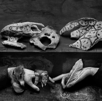 Roger Ballen, 'Complex Ambiguity', 2009