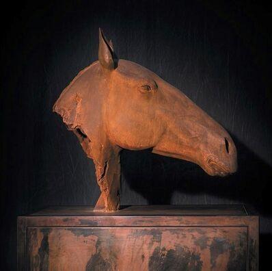 Mauro Corda, 'Vestige Equin', 2013