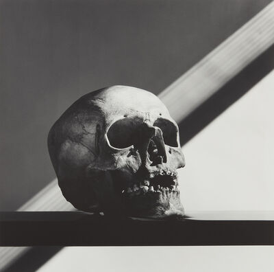 Robert Mapplethorpe, 'Skull', 1988