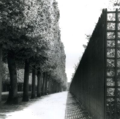 Lynn Geesaman, 'Versailles, France (4-07-22-11)', 2007