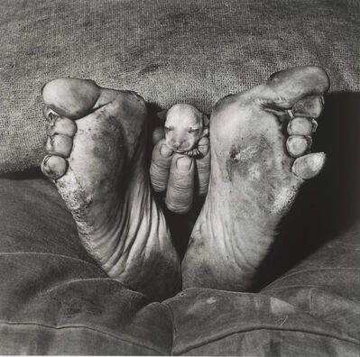 Roger Ballen, 'Puppy between feet', 1999