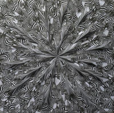 Lola Dupré, 'Liquid Zebra', 2014