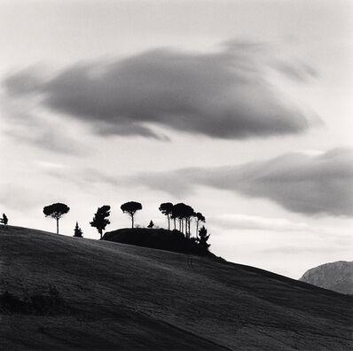 Michael Kenna, 'Pine Tree at Dusk, Loreto, Aprutino, Abruzzo, Italy', 2016