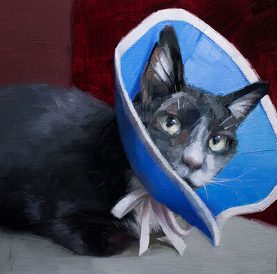 Kirsten Savage, 'Cone of Shame', 2019