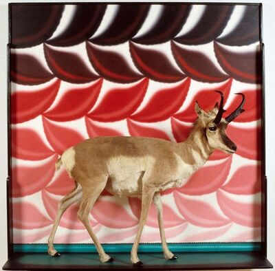 Roger Brown, 'Pronghorn Diorama', 1987