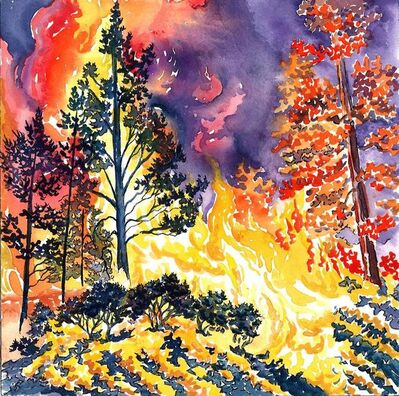 Scott Winterrowd, 'New Mexico Wildfire', 2014