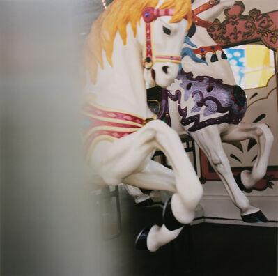 Minako Saitoh, '遊園地シリーズ D', 2014-2017