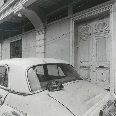 """Mario Algaze, '""""El gato con su 1951 Dodge"""", Garsnavil, Ecuador', 1990"""