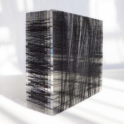 Patrick Carrara, '400 - 600 yds #5', 2014
