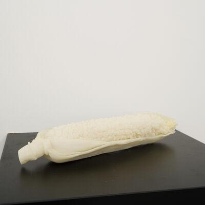 Audrey Cottin, 'Corn Teeth (#4)', 2005