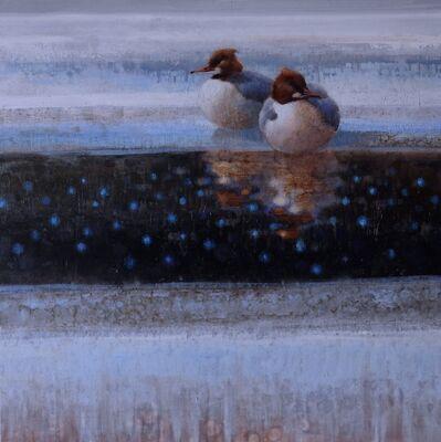 Ewoud De Groot, 'Resting on Ice #1 (Mergansers)'