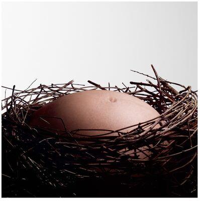 Nancy Fouts, 'Baby Nest ', 2010