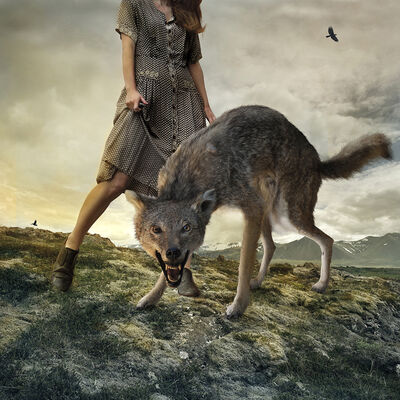 Tom Chambers, 'After You, Me'